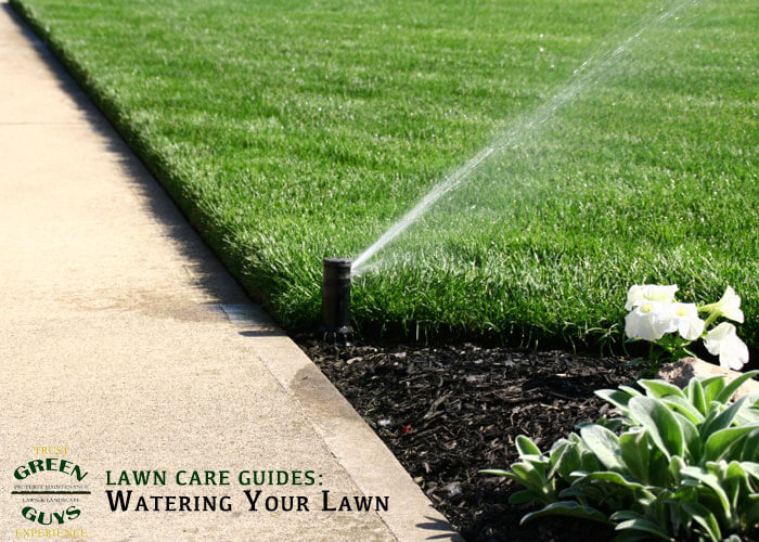 new sod watering instructions